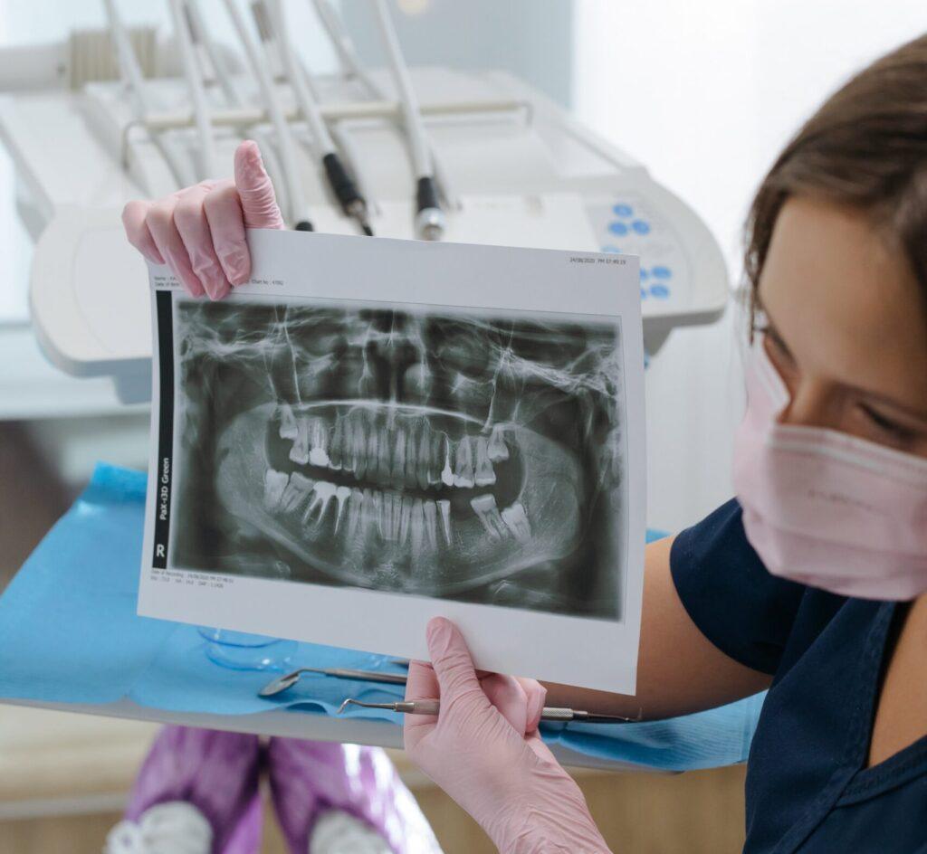 Vrste zubiju